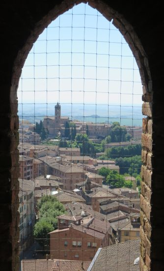 View from the Torre, Siena.