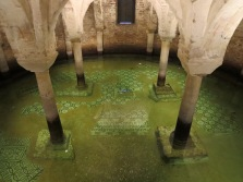 Ravenna: Basilica di San Francesco. Ancient floor mosaic of the crypt submerged in water.