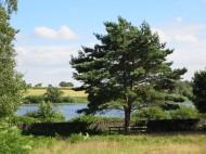 Cropston Reservoir, Bradgate Park, Leicestershire.