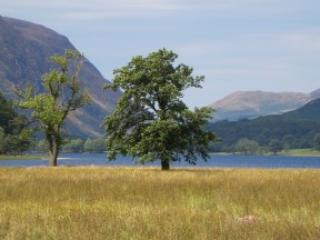 Buttermere Lake.