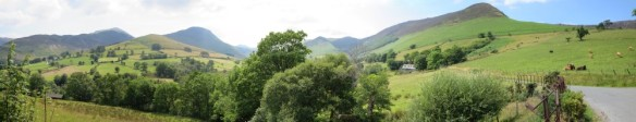 Newlands Pano 2 (Custom)